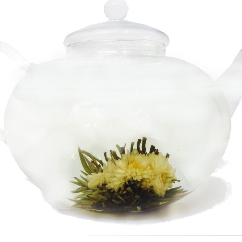 Flowering Tea: Hannah Chrysanthemum