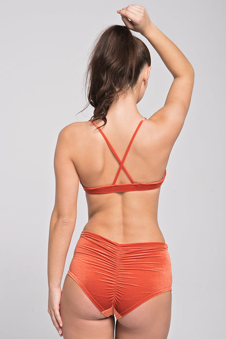 Spicy Velvet High Waist Shorts - Cinnamon-Pole Addict-Pole Junkie