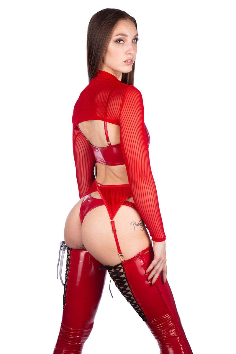 Naughty Thoughts XXX Rated See Through Garter Belt - Red-Naughty Thoughts-Pole Junkie