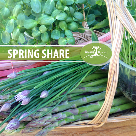 Spring Share