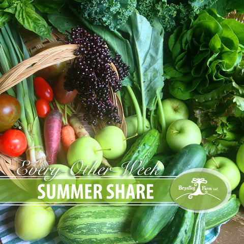 Summer Share: Every-other-week
