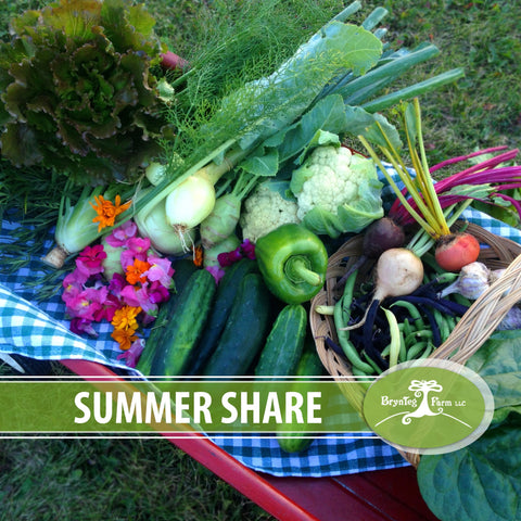 Summer Share: Weekly