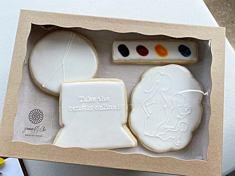 Census Cookie Kit Sample