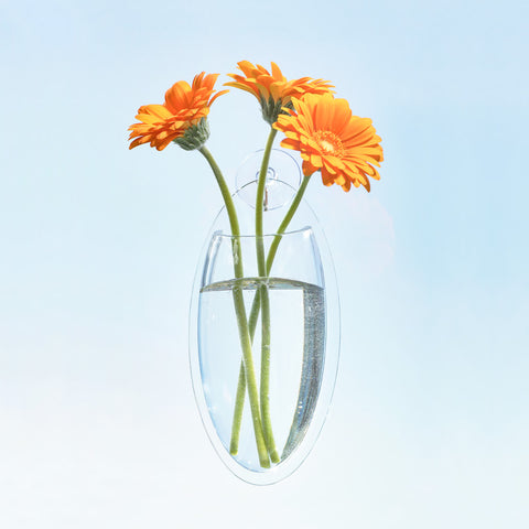 Oval Wall Window Acrylic Vase