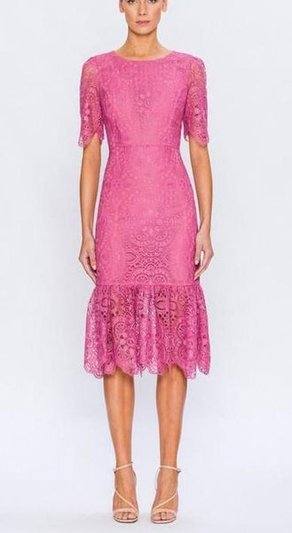 Bodycon Lace Pop of Pink Dress