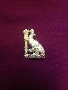 Royal College of Surgeons Pin Badge (small)