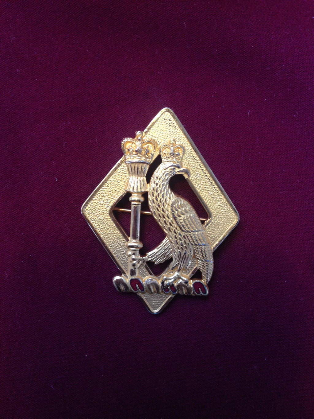 Royal College of Surgeons Pin Badge (Large)