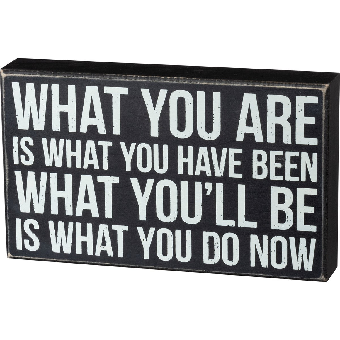 What You Are Is What You Have Been - What You'll Be Is What You Do Now Box Sign