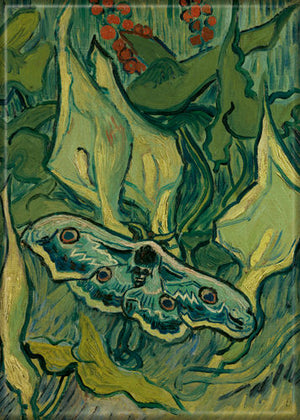 Vincent Van Gogh The Great Peacock Moth magnet