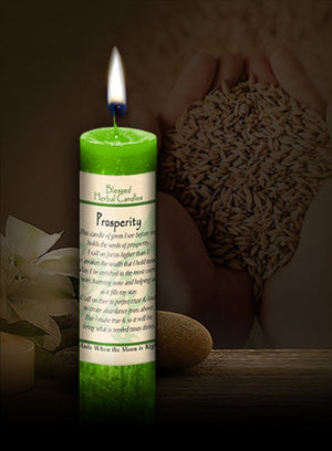 Prosperity ~ Blessed Herbal Candle