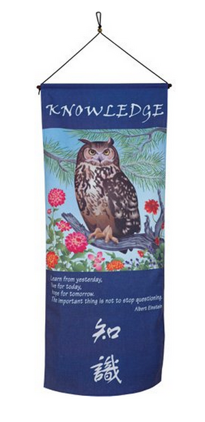 Knowledge Banner Scroll