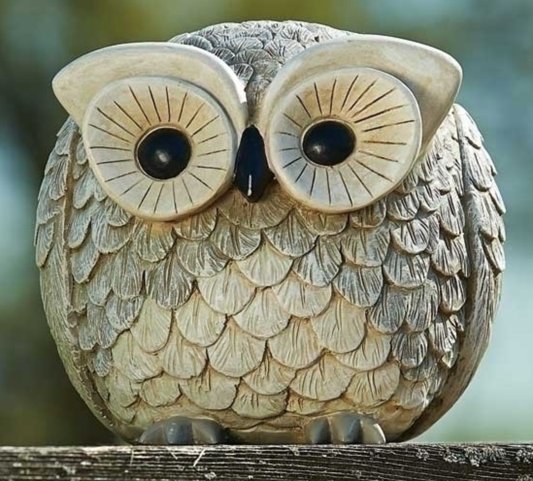 Adorable Owl Pudgy Pals Garden Statue