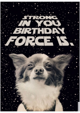 Birthday Force Greeting Card