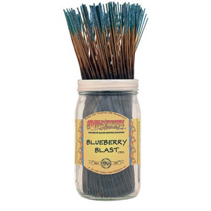 6 Blueberry Blast Fragrance Incense Sticks by Wild Berry (+ Shipping)