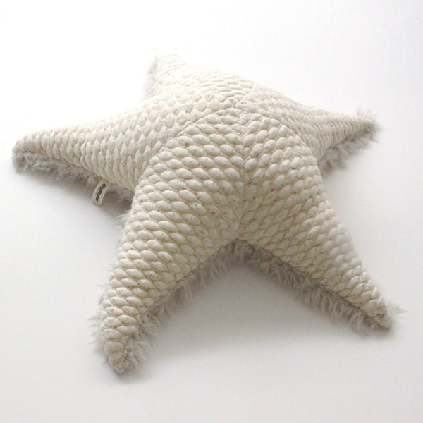 Small Albino SeaStar