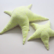 Small Neon Sea Star