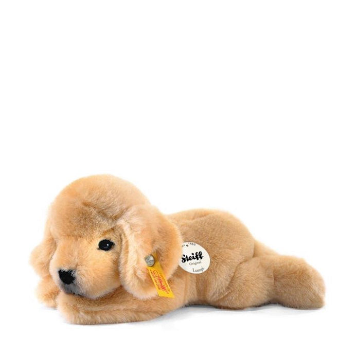 Lumpi Golden Retriever Welpe 22 liegend