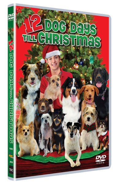 12 Dog Days Till Christmas.12 Dog Days Til Christmas