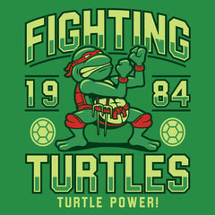 Fighting Turtles