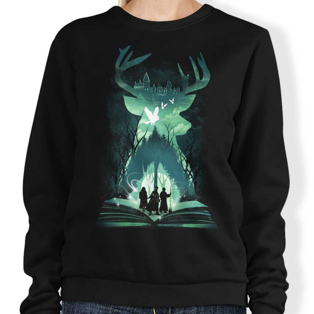 Book of Witchcraft and Wizardry - Sweatshirt