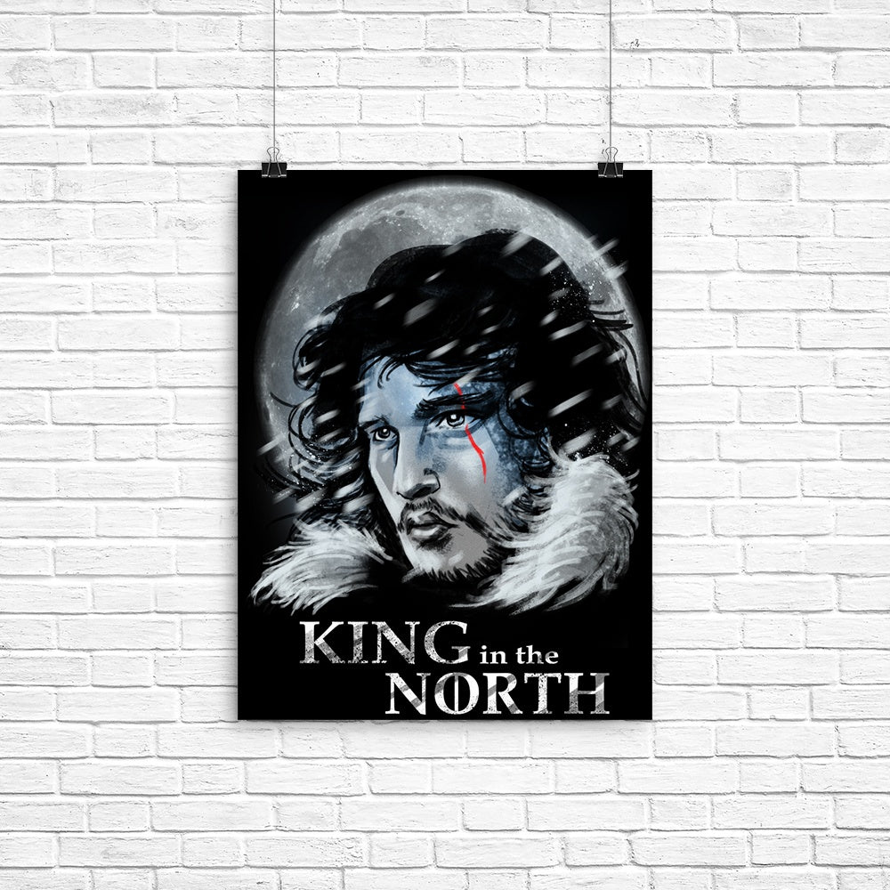 King in the North - Poster