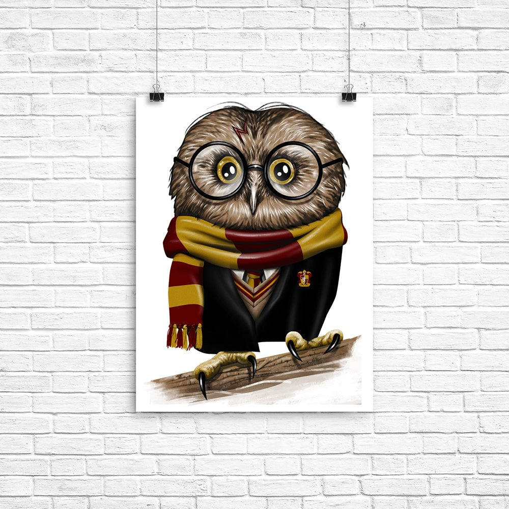 Owl Potter - Poster