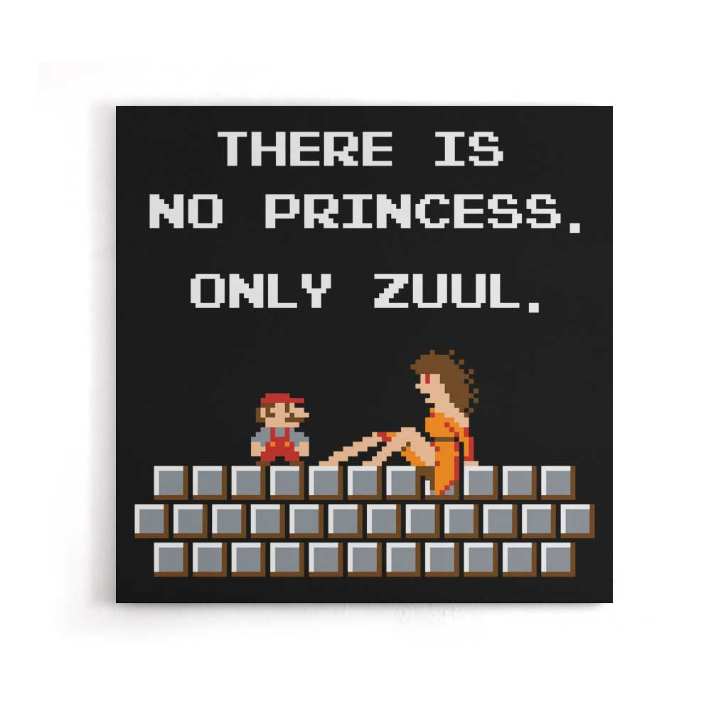 There is No Princess - Canvas Print