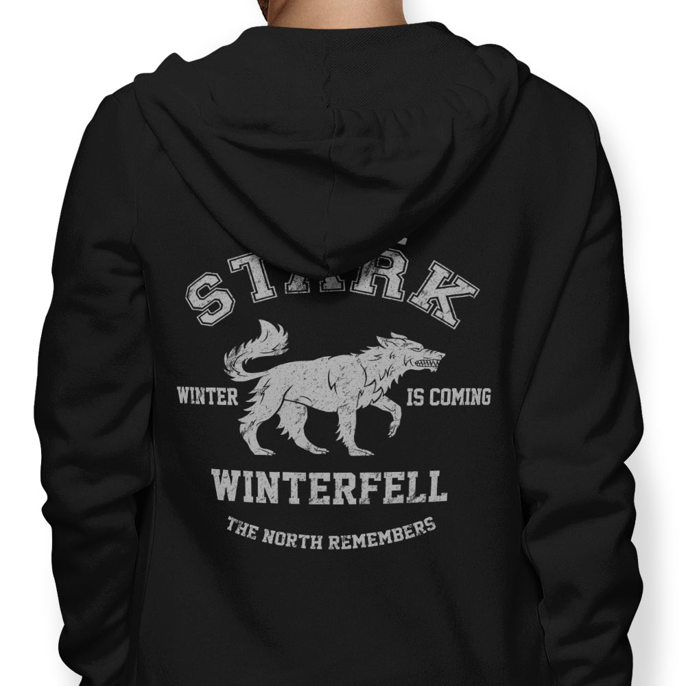 Winter is Coming - Hoodie