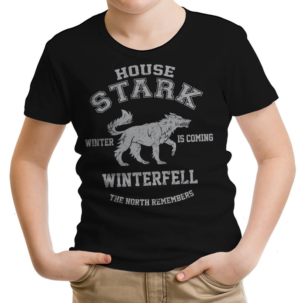 Winter is Coming - Youth Apparel