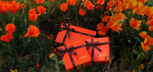 LUPHIA Orange Luxury Gift Box