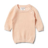 Wilson & Frenchy Scallop Shell Mesh Summer Knit Raglan +