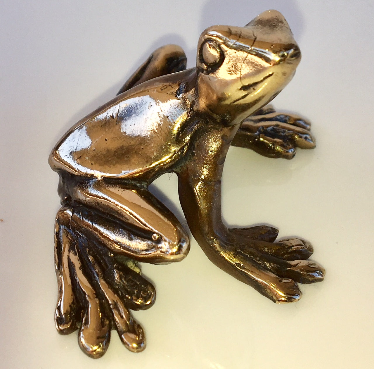 Bronze Shiny Frog