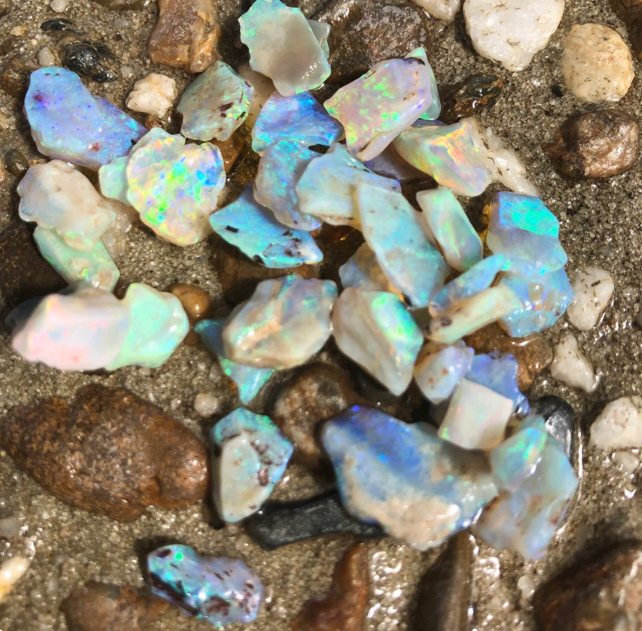 Rough Crystal Opal  from Lightning Ridge