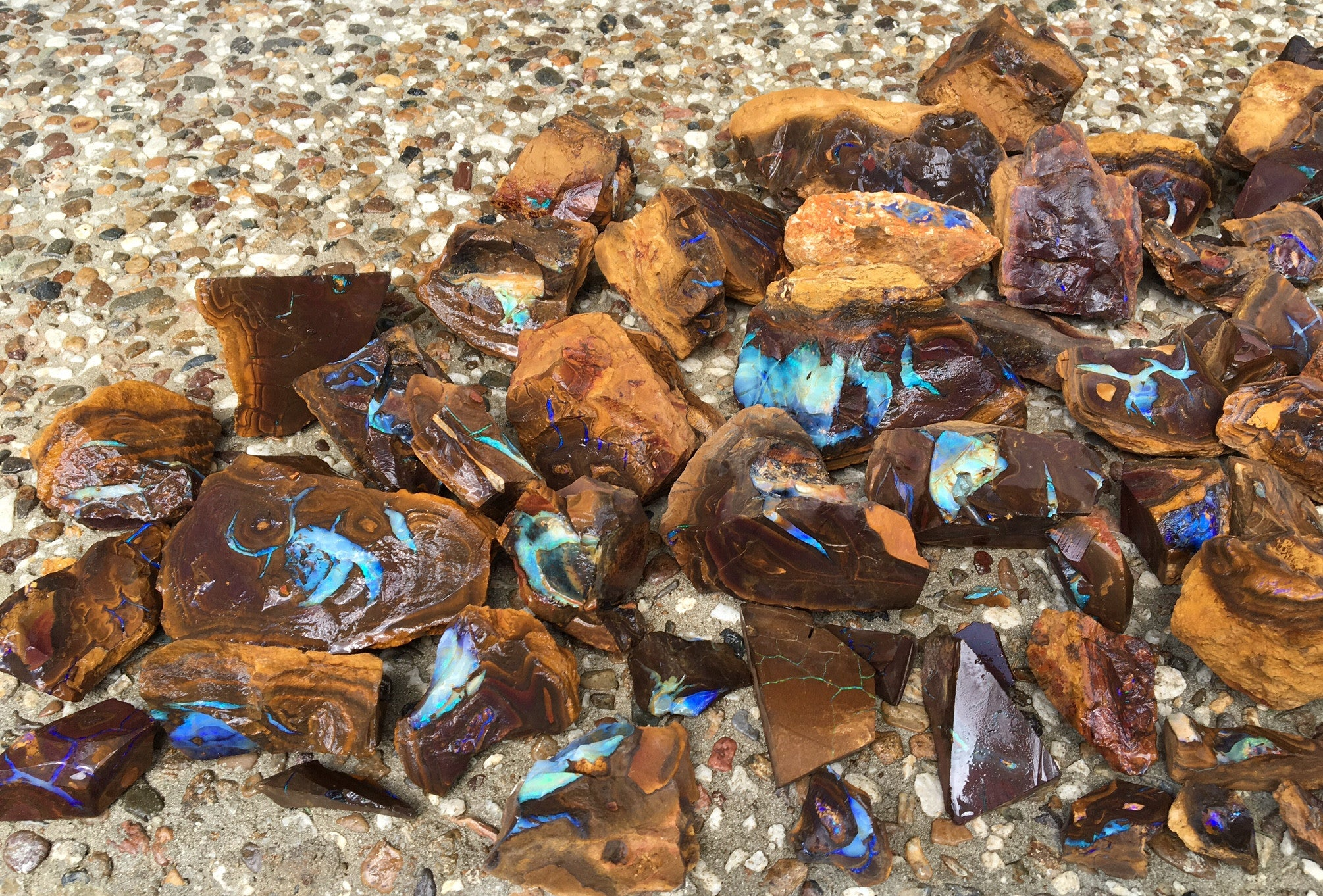 Rough and blocked out boulder opal parcel