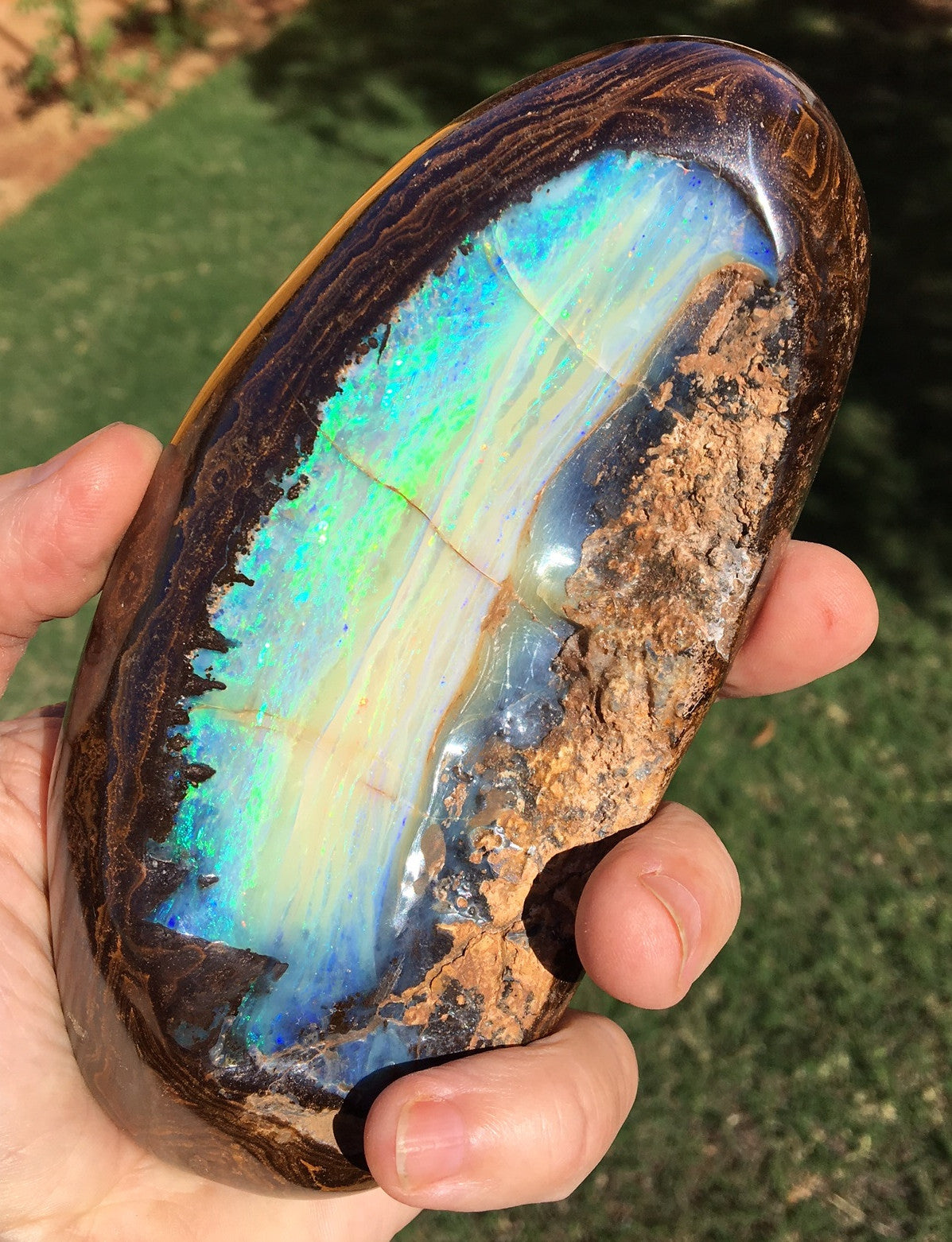 Bright  Green , Green and Blue boulder opal polished specimen