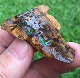 Rough boulder opal with bright green bars