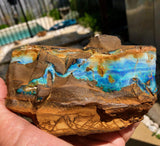Rough Boulder opal with Gemmy face and bars