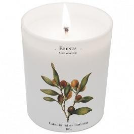 Carriere Freres EBONY (EBENE) candle - Eclectic Cool