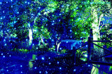 Remote control Royal Blue Laser Outdoor Garden Landscape Light by Ledmall - LedMall