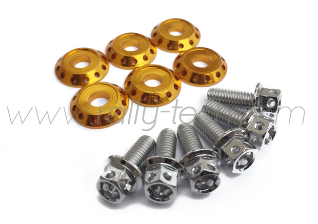 FENDER DRESS UP BOLT KIT - EVO - SILVER - GOLD WASHERS