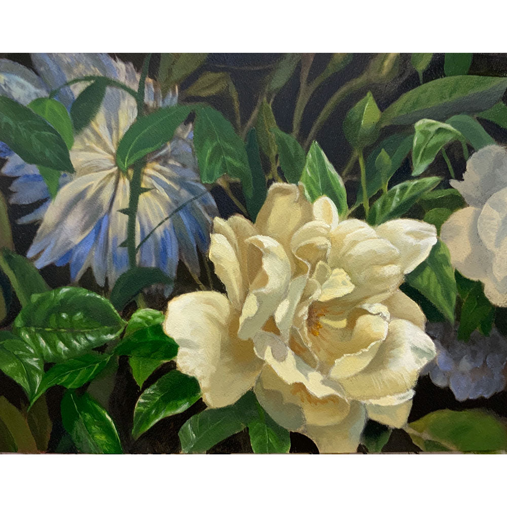 The White Rose - Study by Roger Beale