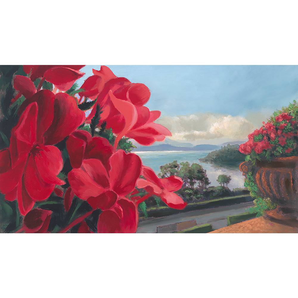 Lake Maggiore flwers - Study by Roger Beale