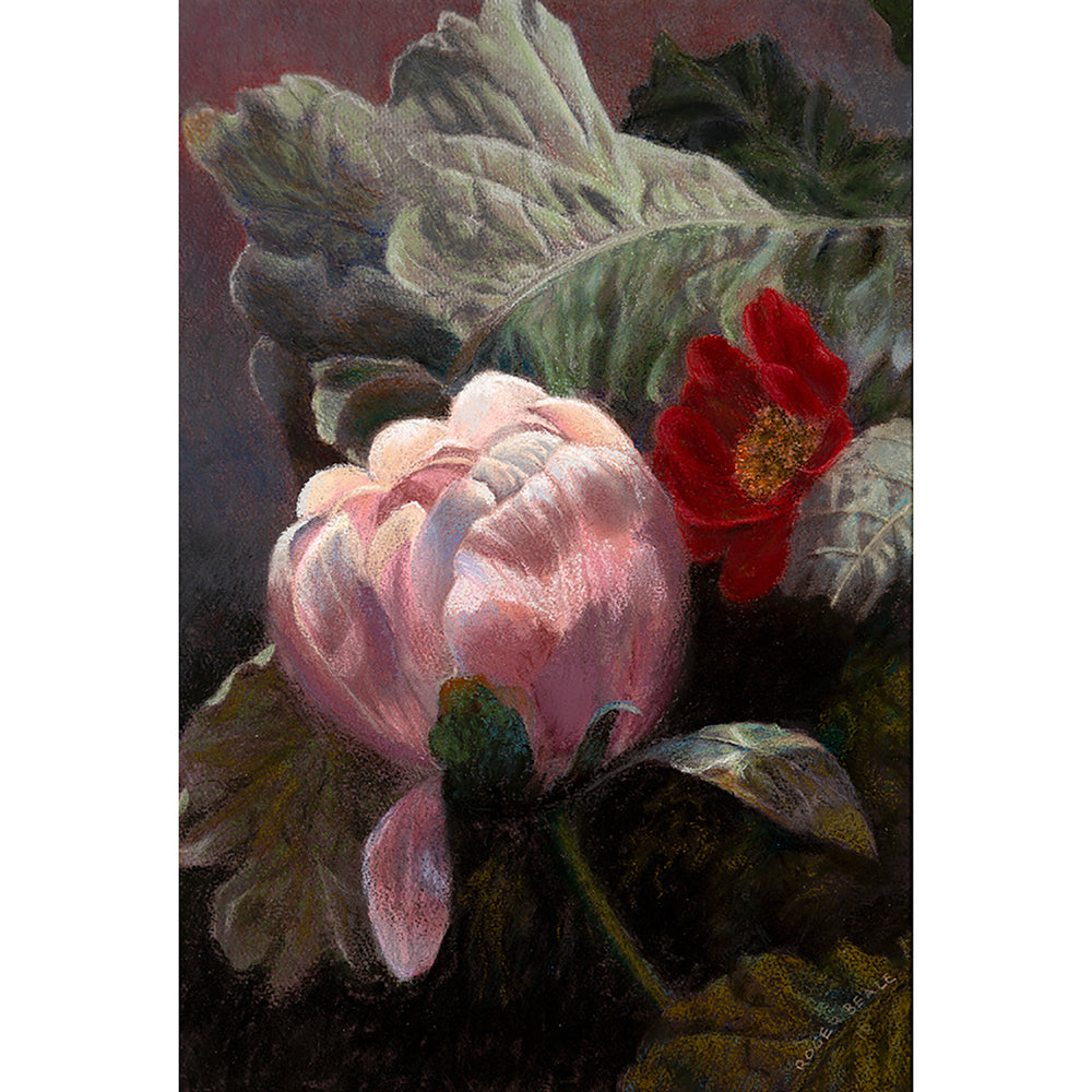Peony with Brassica