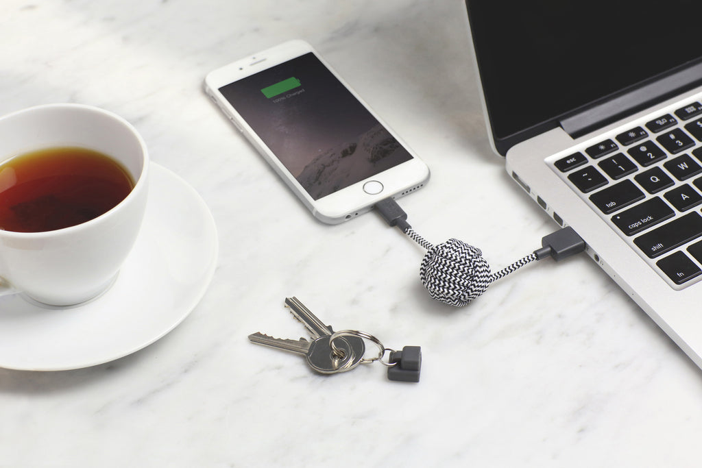 Zebra Key Cable