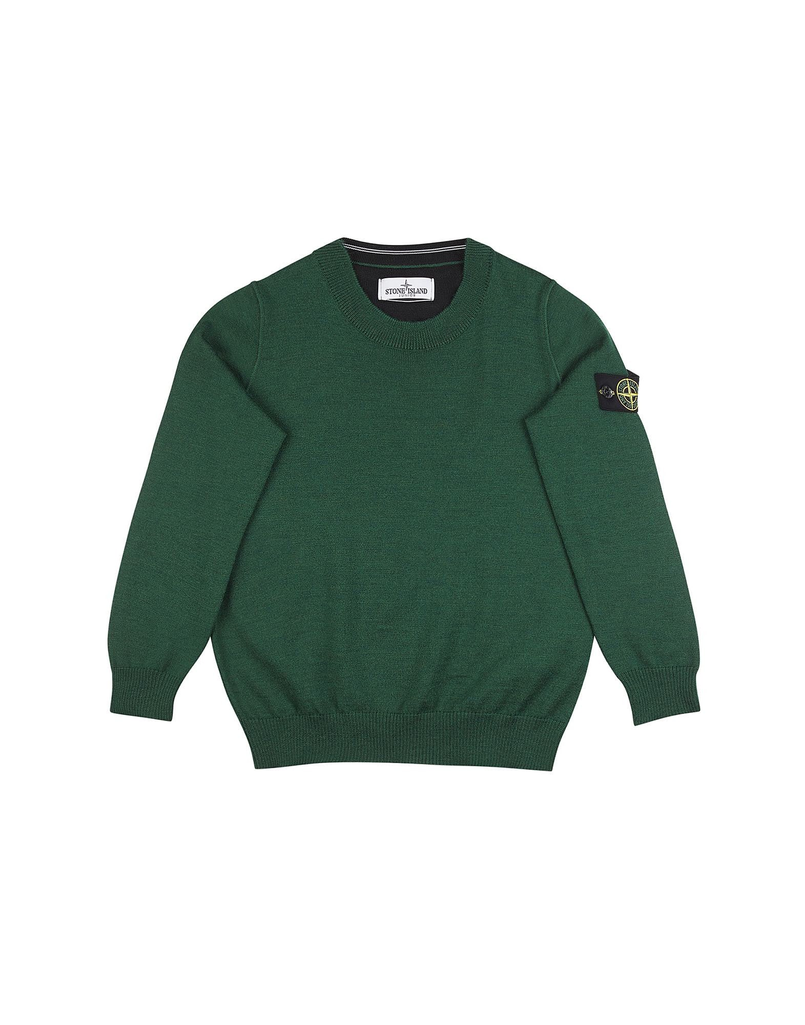 505A4 Wool Sweater in Green