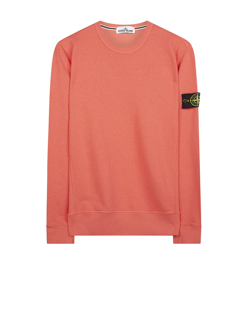 65360 Washed Crew Sweatshirt in Coral