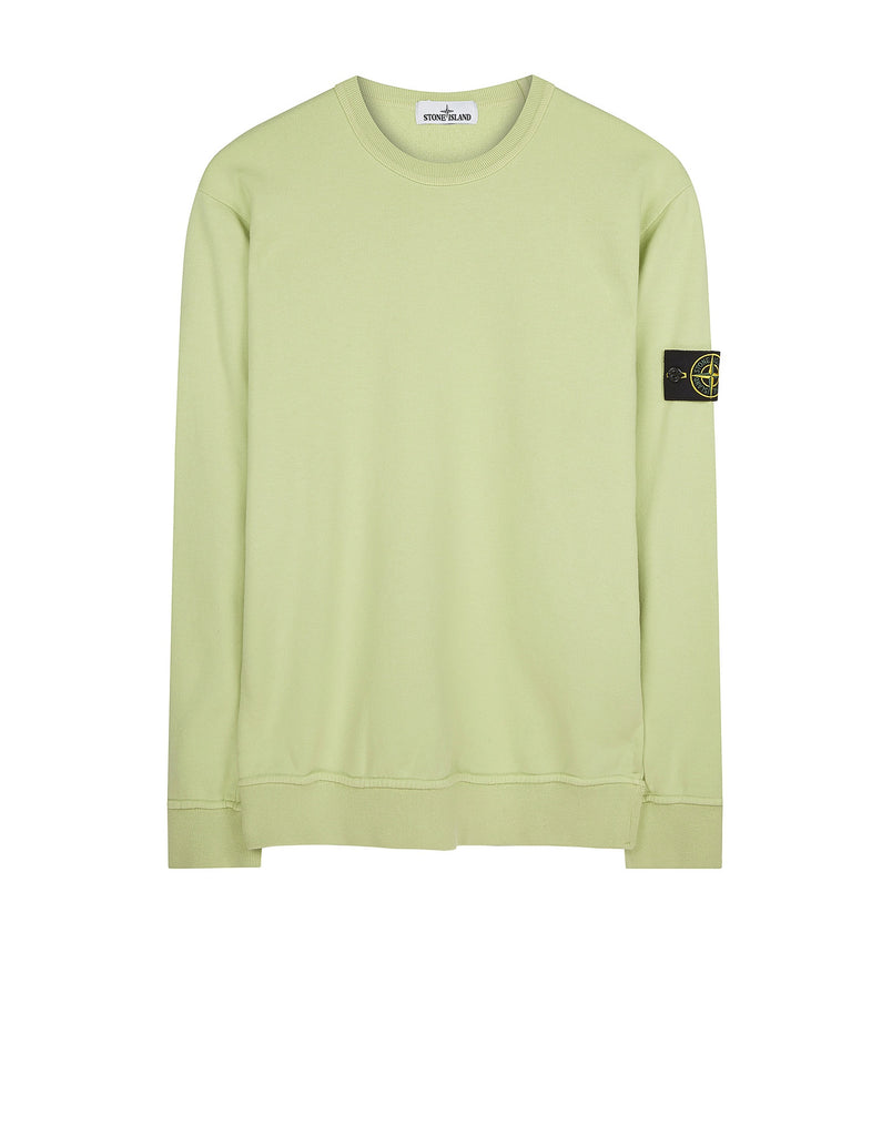 65640 Crew Sweatshirt in Green