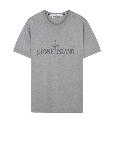 2NS88 INSTITUTIONAL T-Shirt in Heather Grey