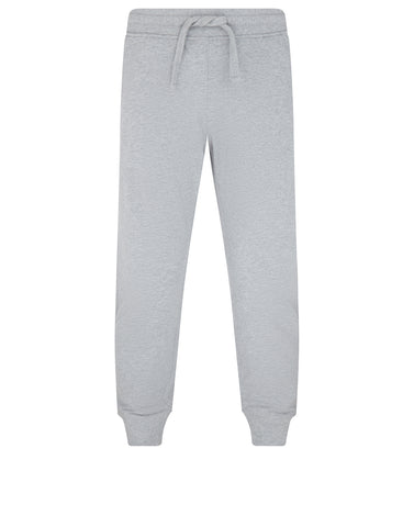 66739 Jogging Pants in Grey