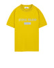 20144 Reflective Print T-Shirt in Mustard